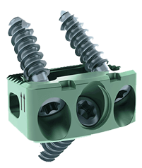 CHESAPEAKE® Cervical-Ti Stabilization System